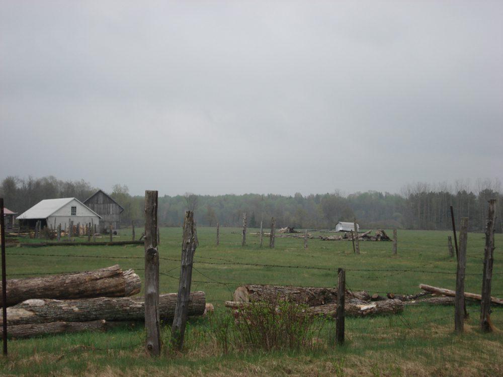 Gelert – Sedgwick-Farm